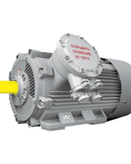5АИ 355 М10 ЕТ (ЕТ1) ESQ Электродвигатели с тормозом
