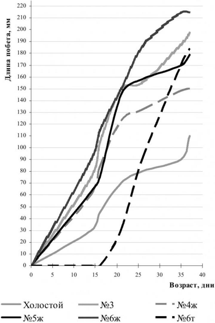 Рисунок 2 – Динамика роста семян пшеницы в опытах с биоудобрениями